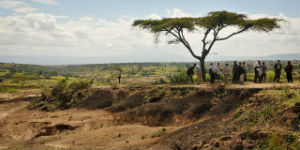 RELEASE: African Countries Launch AFR100 to Restore 100 Million Hectares of Land