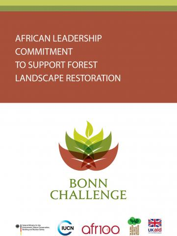 Image of African Leadership Commitment to Support Forest Landscape Restoration