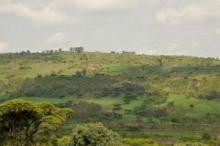 Restoring Africa's Degraded Lands by Improving Farmers' Rights