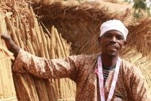 Yahouza Harouna showing his millet stock at his house in the village of Tambara-Sofoua Yahaya.